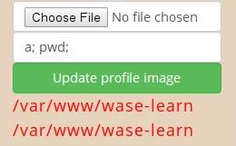 update profile error